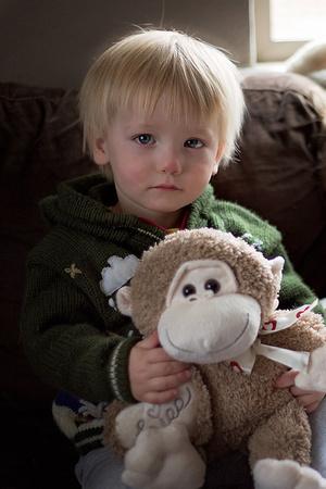Family Photography, Denver Photographer, Family portraits, sibling photography, baby photography